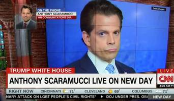 'Scaramucci is Dumb as a Rock': Twitter Weighs in On Scaramania