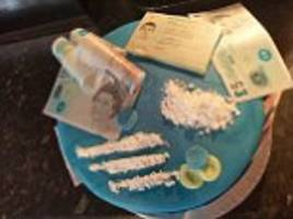 girlfriend orders a cocaine-themed 23rd birthday cake