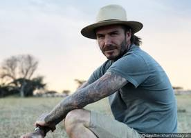 david beckham signs his autograph on fangirl's butt amid split rumors from wife victoria