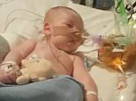 charlie gard captured the hearts of the world