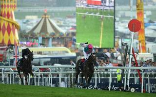 horse racing betting tips: back enable to be crowned queen at ascot