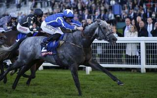 horse racing betting tips: flaming spear can breeze to ascot glory