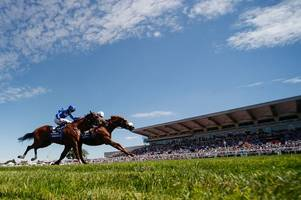 @fillyonform: 4 reasons to back ulysses in the king george vi and queen elizabeth stakes