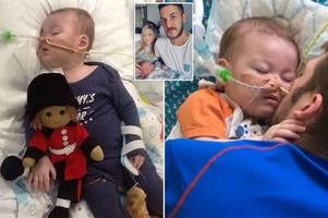charlie gard will be buried with his 'beloved' toy monkeys, heartbroken parents reveal