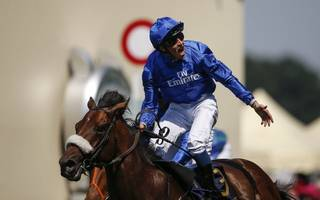 horse racing betting tips: ribchester to win his 'duel on the downs'