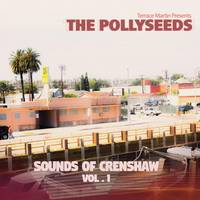 terrace martin presents the pollyseeds - sounds of crenshaw vol. 1