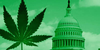 it's been exactly 80 years since the us declared war on weed - and weed is still winning