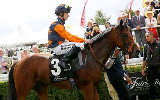 horse racing betting tips: kachy if you can at goodwood