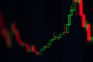 Bitcoin Cash Price Keeps Dropping as Bittrex Deposits and Bitfinex Margin Trading Opens