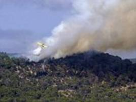 tourists' shock after a forest fire breaks out in ibiza