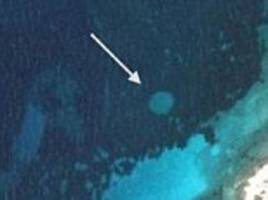 Underwater 'fairy circles' are caused by invading species