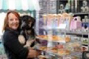 Dog cafe sells beer, chocolate, pizza and EVERYTHING else you...