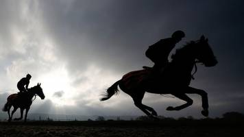 'Wrong horse' who won race disqualified and trainer fined
