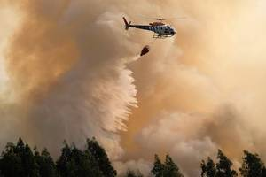 Heat and Wind Revitalize Forest Fires Across Portugal