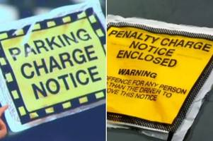 Do you have to pay parking tickets? Here are your rights explained