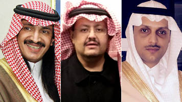 Saudi Arabia's lost princes