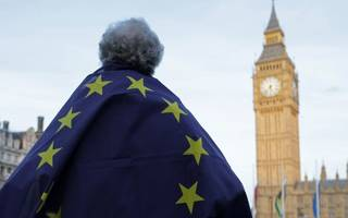 is losing the ability to sue government over failure to enact eu law ok?