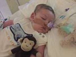 charlie gard's parents will set up £1.3million foundation