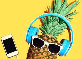 very weird things banned from music festivals