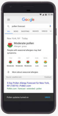 Google wants to save you from allergies with new pollen forecasts