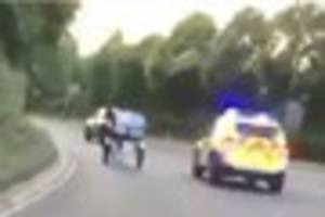 Bizarre footage shows police 'chasing' horse and cart through...