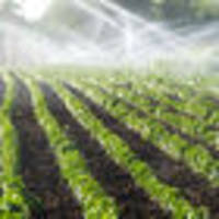 Labour's water tax wrong to target irrigators, says lobby group