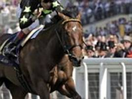 lady aurelia produces sparkling display at york