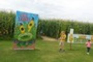 Here are NINE reasons why you should visit Oliver's Maze and Fun...