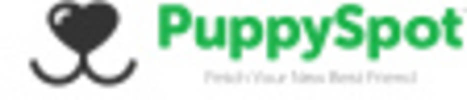 PuppySpot.com Commends New York Governor Cuomo and the State Legislature on S.5599 / A.7195