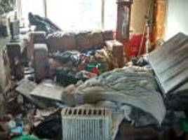 Dogs taken after being kept in filthy conditions in Wirral