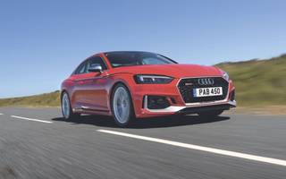 the new audi rs5 is the connoisseur's performance coupe