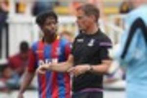 crystal palace boss makes seven changes for carabao cup clash...