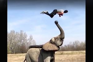 Most-viewed Facebook video ever proves People Are Awesome