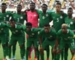 rohr's nigeria squad for cameroon is fair, says green