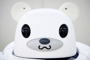 Robot bears are coming for your grandparents