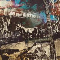 complete guide: at the drive in