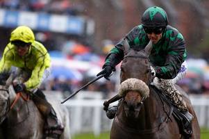 clever cookie can roll back the years and win yorkshire ebor