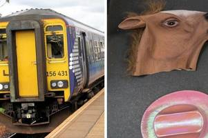 from kittens to false teeth scotrail releases top 10 list of strangest things left on trains