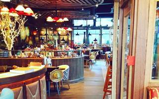 chiquito tell me what's wrong: profits slide at restaurant group