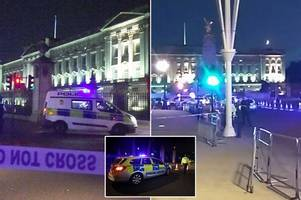 buckingham palace samurai sword suspect appears in court accused of terror attack plot