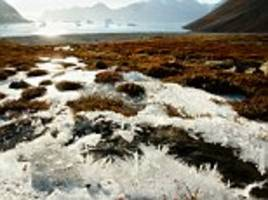 melting arctic permafrost could unlock ancient diseases