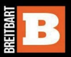breitbart accused of ripping off black lives matter photo in new lawsuit