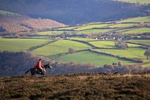balancing act for national trust on shooting, badger cull and trail hunting