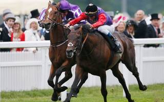 horse racing betting tips: eminent and dartmouth can plunder irish treasure