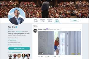ted cruz has been reported to twitter for liking porn