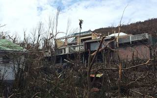 Lords urge government to contribute to EU budget to help rebuild after Irma