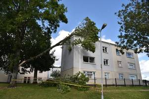 Residents felt force of Storm Aileen when a tree fell on block of flats