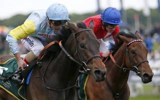horse racing betting tips: tomyris can prove she is all  class for varian