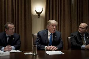 President Trump Calls Sanders' Single Payer Plan a 'Curse on the US'