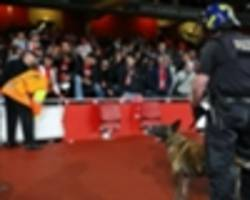 cologne apologise for fan behaviour but highlight arsenal's ticketing oversight